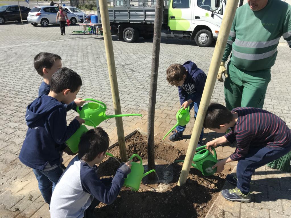 AEAR Comemoração do dia da Árvore em Porto Salvo